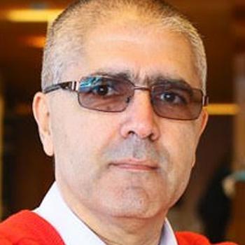 Manuel Luís Capelas